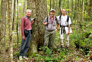 Rick Seavey, Tom Govus and Rickie White beside old growth yellow birch in Blue Ridge Parkway.