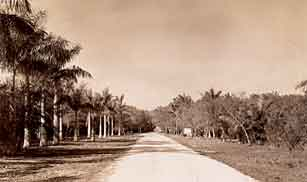 Entrance to Royal Palm State Park about 1934-1935.